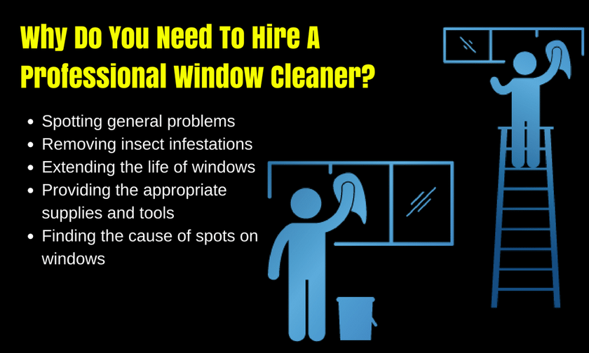 Why Hire A Professional Window Cleaner?